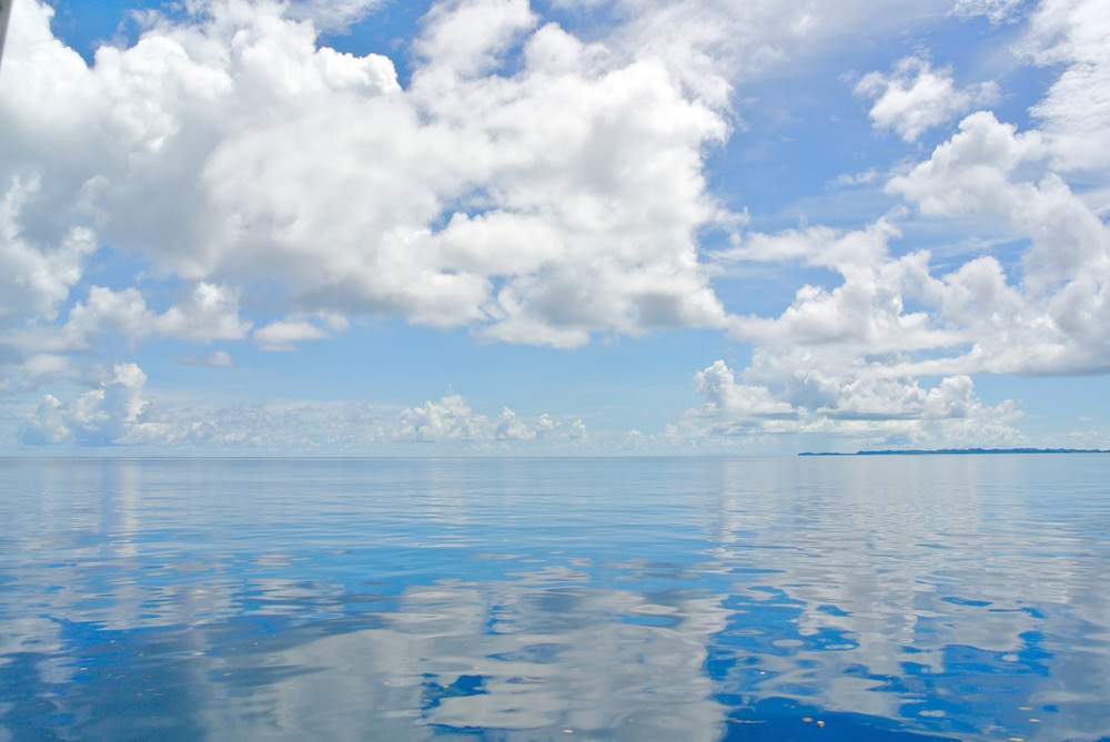 パラオの海